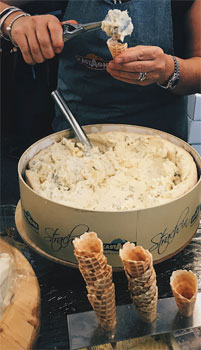The Smelly Cheese Shop at Good Food & Wine Show