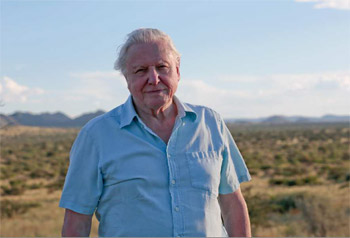 Sir David Attenborough Narrates BBC Earth's Life story Installation at Vivid Sydney