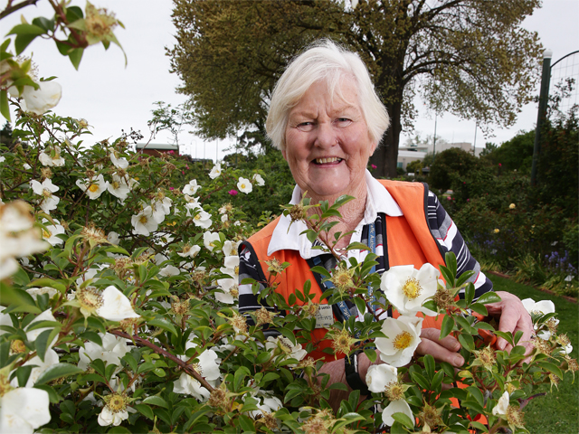 Del Matthews International Rose Garden Festival Morwell Interview