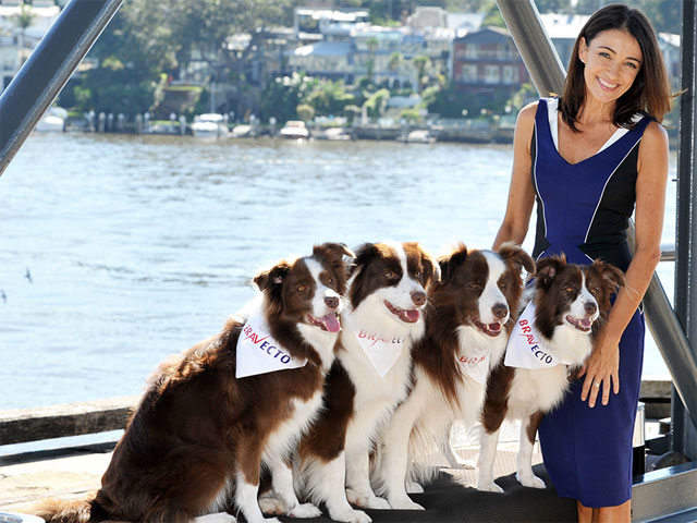 Dr. Katrina Warren Travelling With Pets Interview