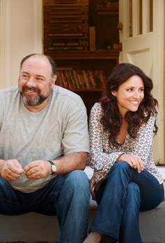 Julia Louis-Dreyfus and James Gandolfini Enough Said
