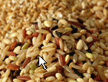 A Fiber-Rich Diet may Protect Against Cancer