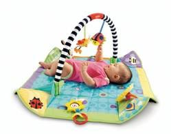 Fisher-Price Miracles and Milestones Pop Open Play Gym