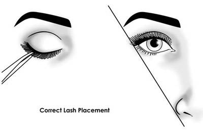 The Art of Applying False Lashes Correct Lash Placement