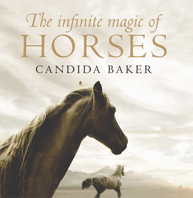 The Infinite Magic of Horses