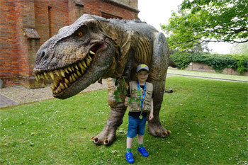 Cancer Patient Beau Walks with a Dinosaur