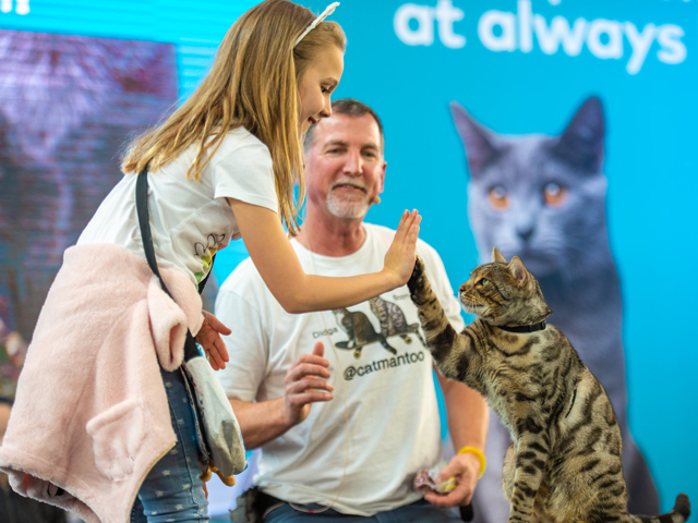 Cat Lovers Show Melbourne
