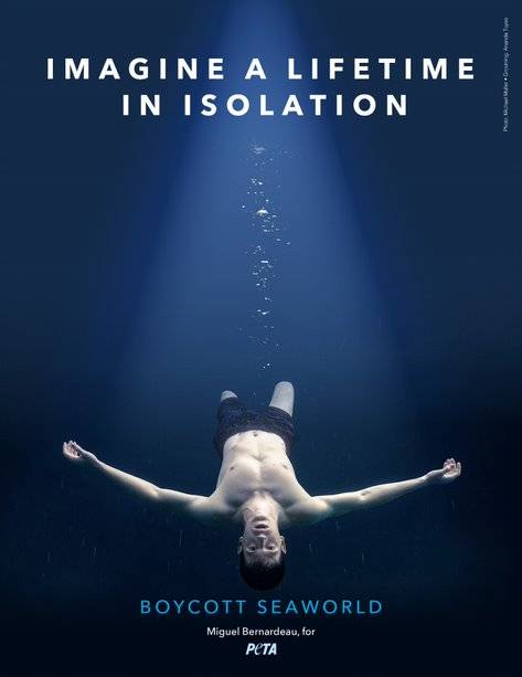 Imagine a Lifetime In Isolation