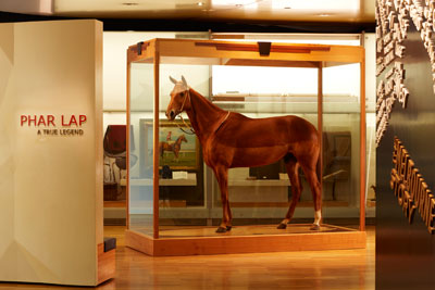 Phar Lap comes together for 150th Melbourne Cup