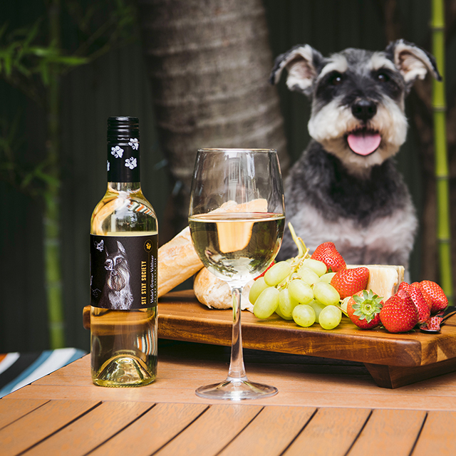 Help Pets in Need with Sit Stay Society Wines