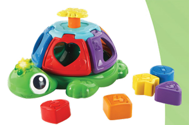 Sort and Spin Turtle