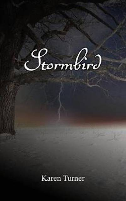 Karen Turner Stormbird Interview
