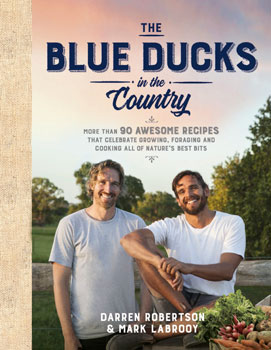 The Blue Ducks in the Country