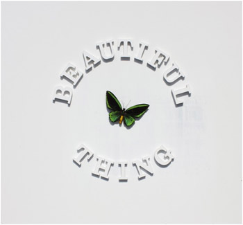 The Stone Roses Beautiful Thing