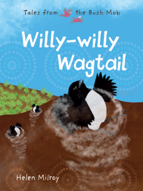 Willy Willy Wagtail