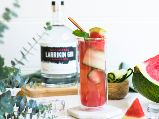 Watermelon and Mint Gin with Tonic
