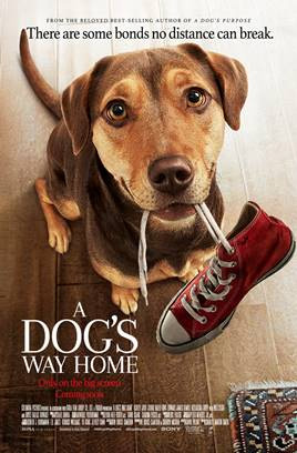 A Dog's Way Home Movie Tickets