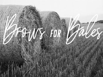 Brows For Bales