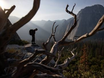 Free Solo Directors Interview