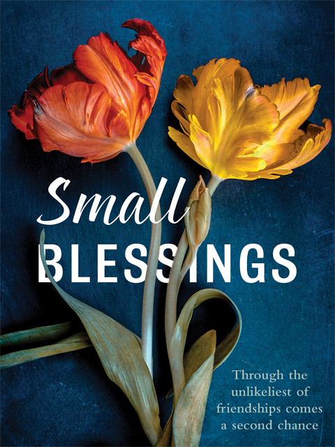 Small Blessings Books